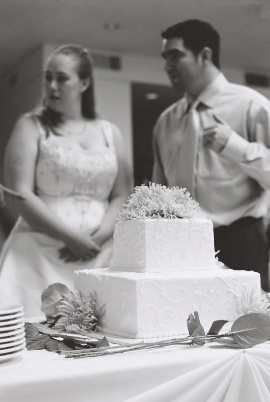 DIY Los Angeles wedding reception at Griffith Park on 35mm film