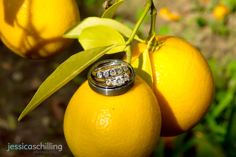 Quirky indie cool fun wedding photography detail shot of wedding rings on cute oranges