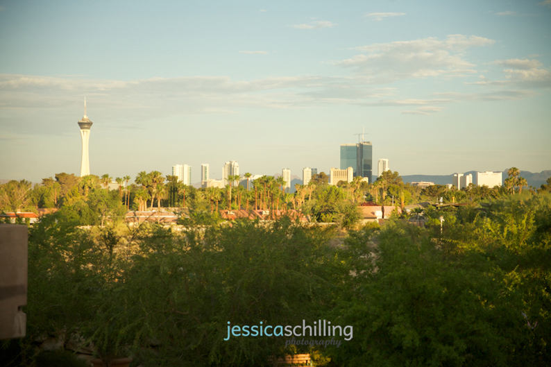 Las Vegas destination wedding view of the strip from the Springs Preserve by Jessica Schilling