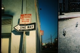 Los Angeles Venice Beach street photography of street signs and seagulls taken with a Diana Mini