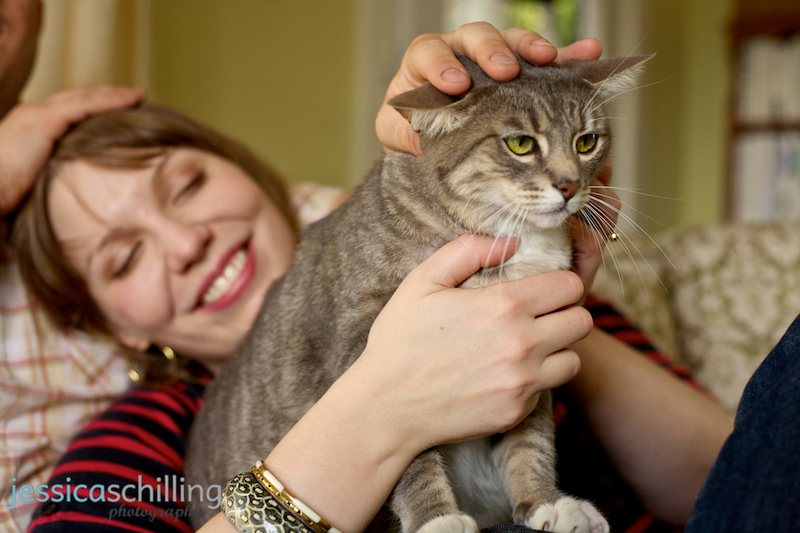 Los Angeles pet photography with cat in lap during engagement photos