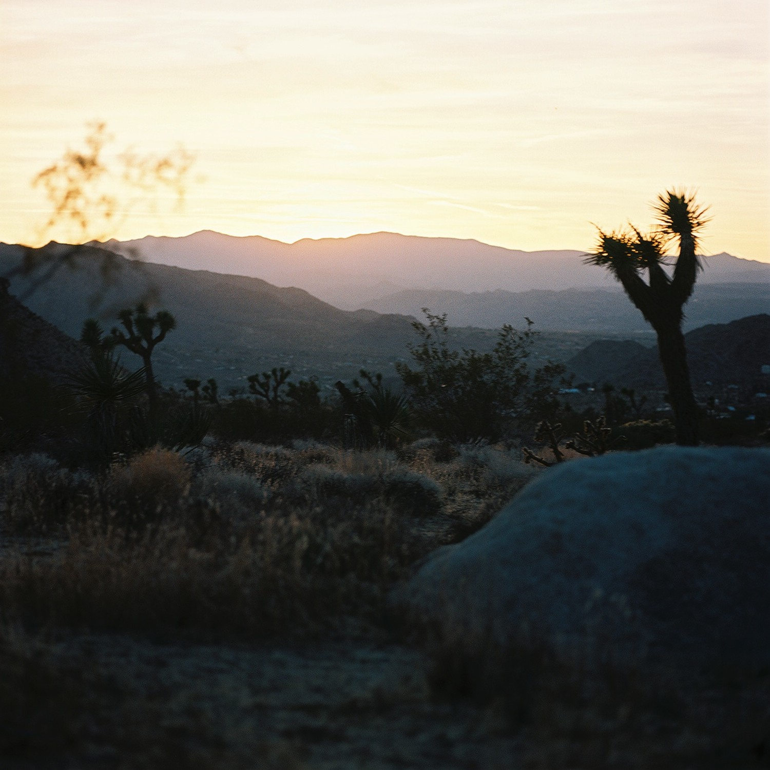 sun setting over purple mountains in Joshua Tree park California by indie wedding photographer Jessica Schilling
