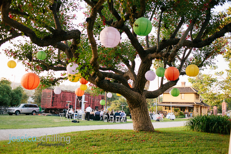 colorful paper lanterns hanging from tree for outdoor wedding deocrations