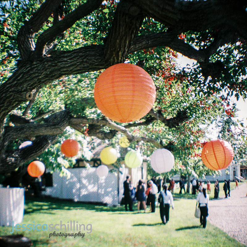 Los Angeles toy camera wedding photography colorful paper lanterns in tree