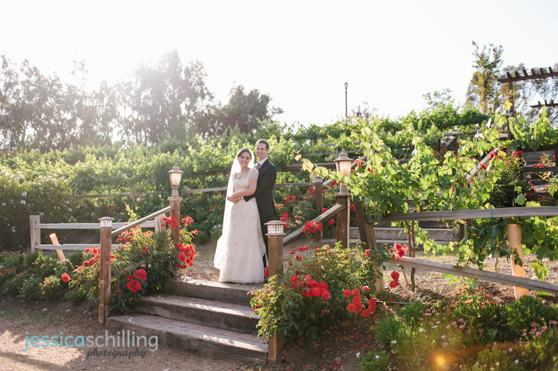 bride and groom portraits at wine country vineyard with red roses Temecula
