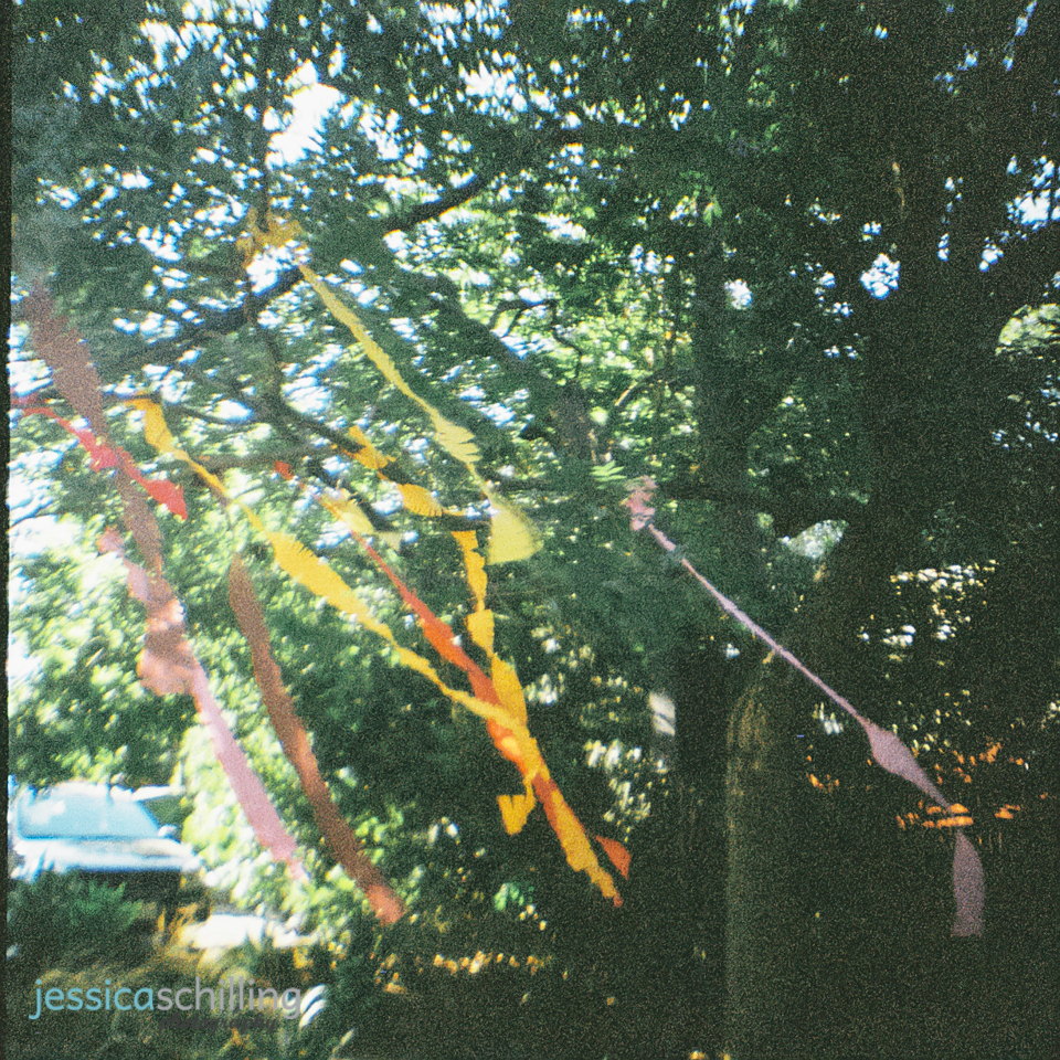 DIY wedding decor colorful streamers hung from tree for outdoor ceremony