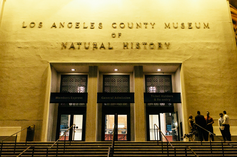Los Angeles Natural History Museum wedding photographer night
