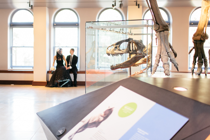 offbeat quirky indie dinosaur themed wedding at LA natural history museum