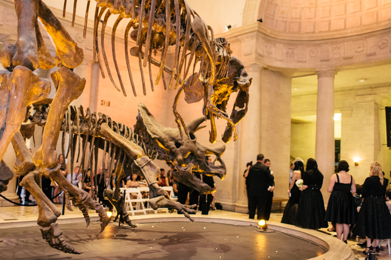 Natural History Museum Offbeat Quirky In Wedding Photographer Los Angeles