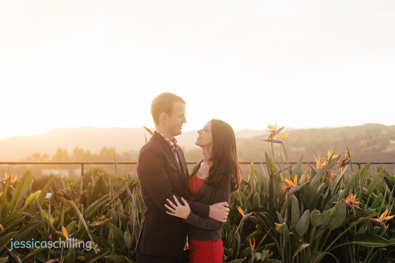 engagement photography sunset over Hollywood Hills Los Angeles birds of paradise