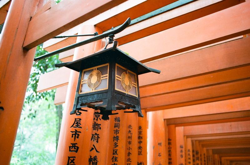 Lantern hanging in torii gates at Fushimi Inari shrine Kyoto Japan