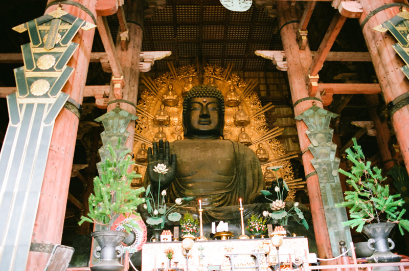 Todaiji Temple Golden Buddha statue. Nara travel photographer.