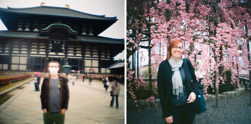 Todaiji Temple and plum blossoms toy camera photography in Japan