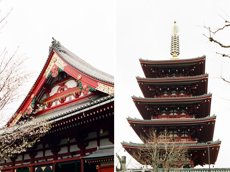 Asakusa temple pagoda in Tokyo during cherry blossom season