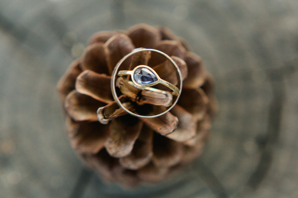 Rustic glam wedding rings on pinecone at summer camp wedding