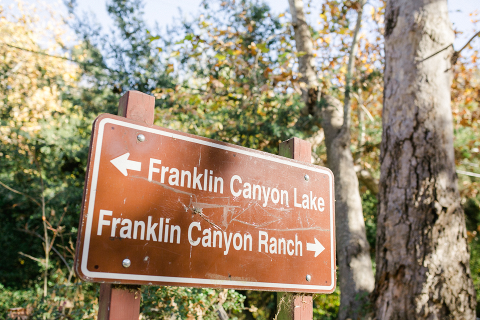 Franklin canyon park wedding