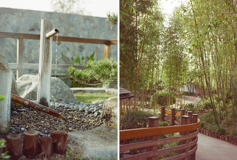 LA Van Nuys Japanese Gardens cool wedding and engagement photos location