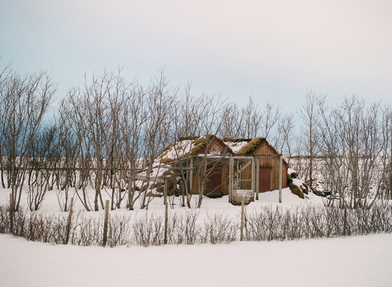 Selfoss house in snowy winter wonderland. Destination travel photography of Iceland on film.