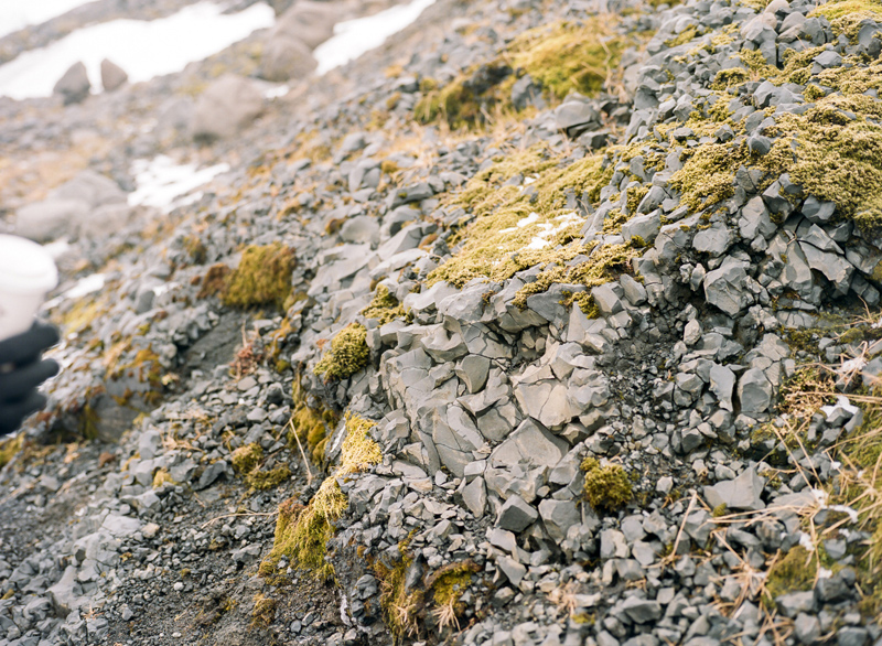 Iceland destination travel photography on film. Rocks and moss at Icelandic glacier