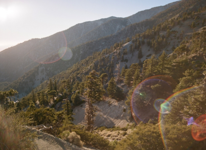 Angeles National Forest. LA elopement photographer. Nature weddings.