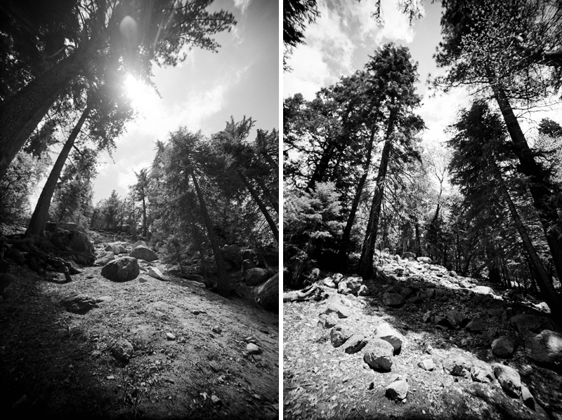 009-idyllwild-photographer