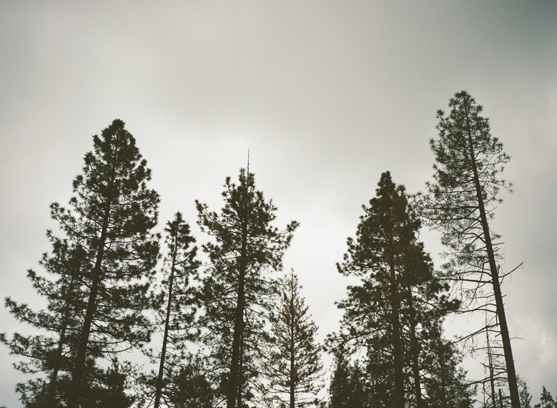 022-idyllwild-photographer