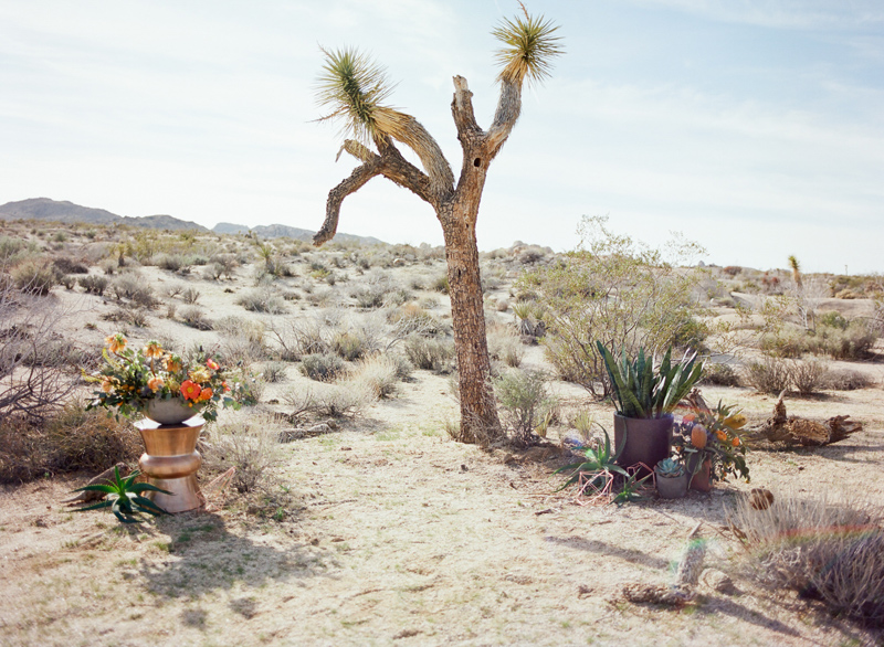 Ceremony setting for outdoor desert elopement in Joshua Tree national park by film photographer Jessica Schilling