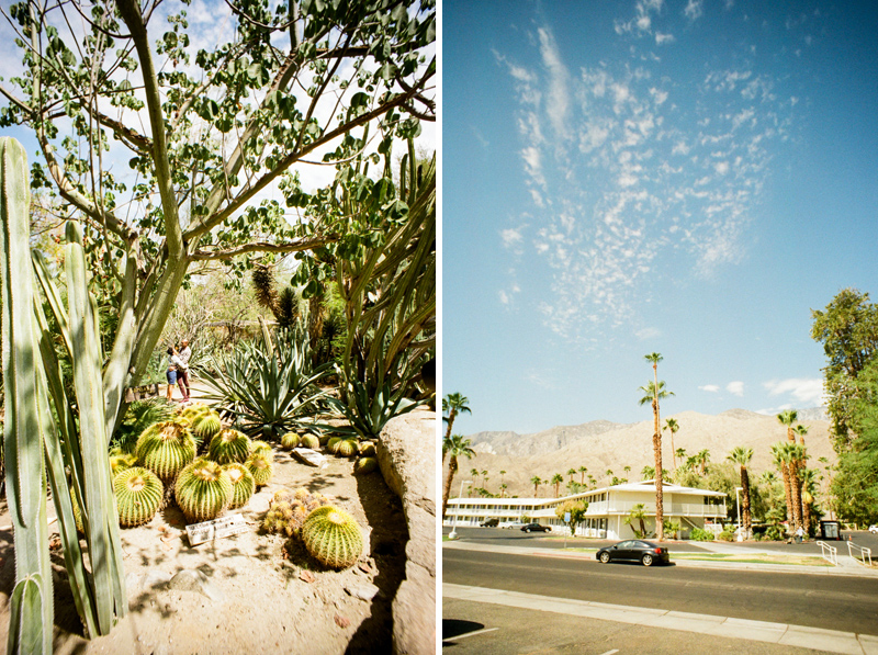 Palm Springs elopement photographer. Toy camera wedding photography