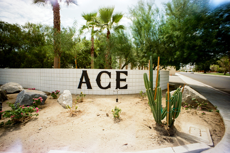 ACE Hotel and Swim Club Palm Springs elopement photographer