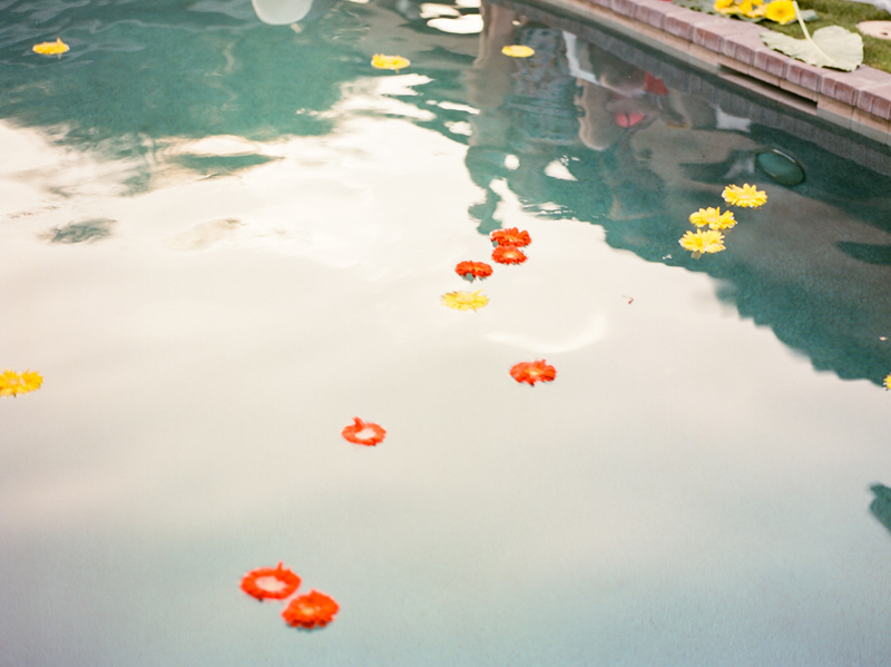 Palm Springs at home wedding photography - daisies in pool in backyard