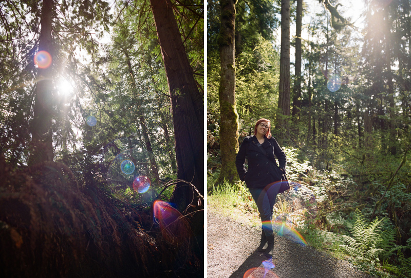 Sequoia and redwood groves for forest elopements in Yosemite and Big Sur