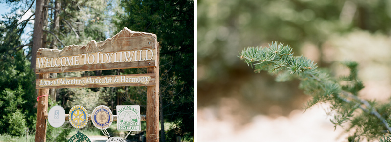 010-california-forest-weddings