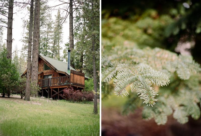 012-california-forest-weddings