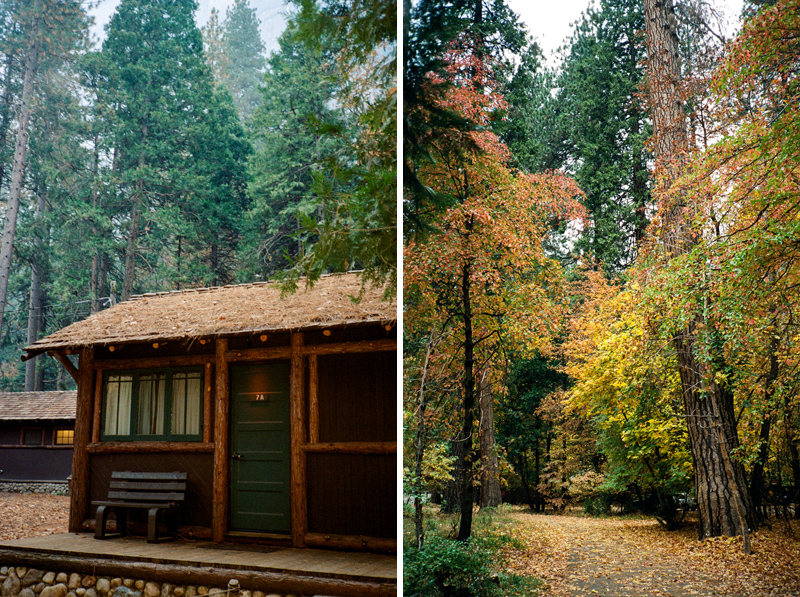 Autumn colors in Yosemite National Park at Half Dome Village by film photographer Jessica Schilling