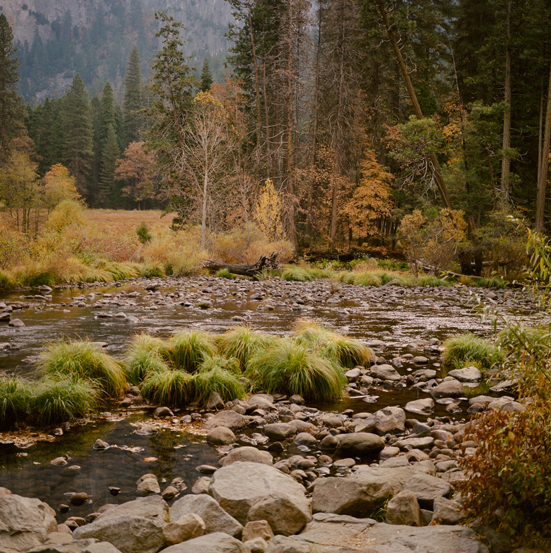 Valley View river. Autumn in Yosemite National Park on medium format film.