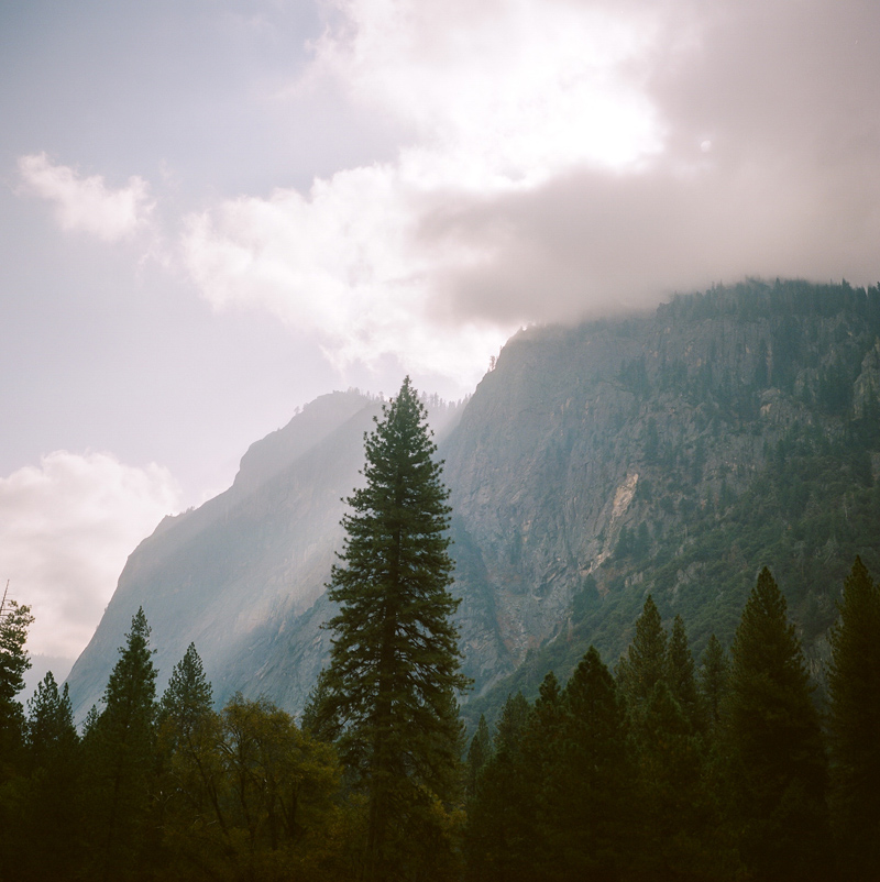 California destination weddings and elopements at Yosemite National Park