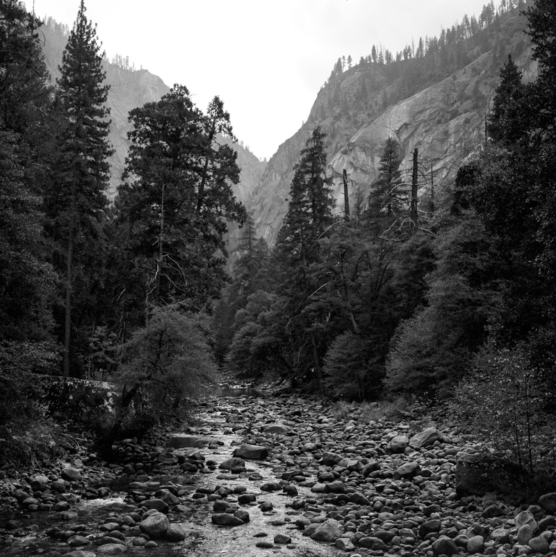 Yosemite Black and white film photography