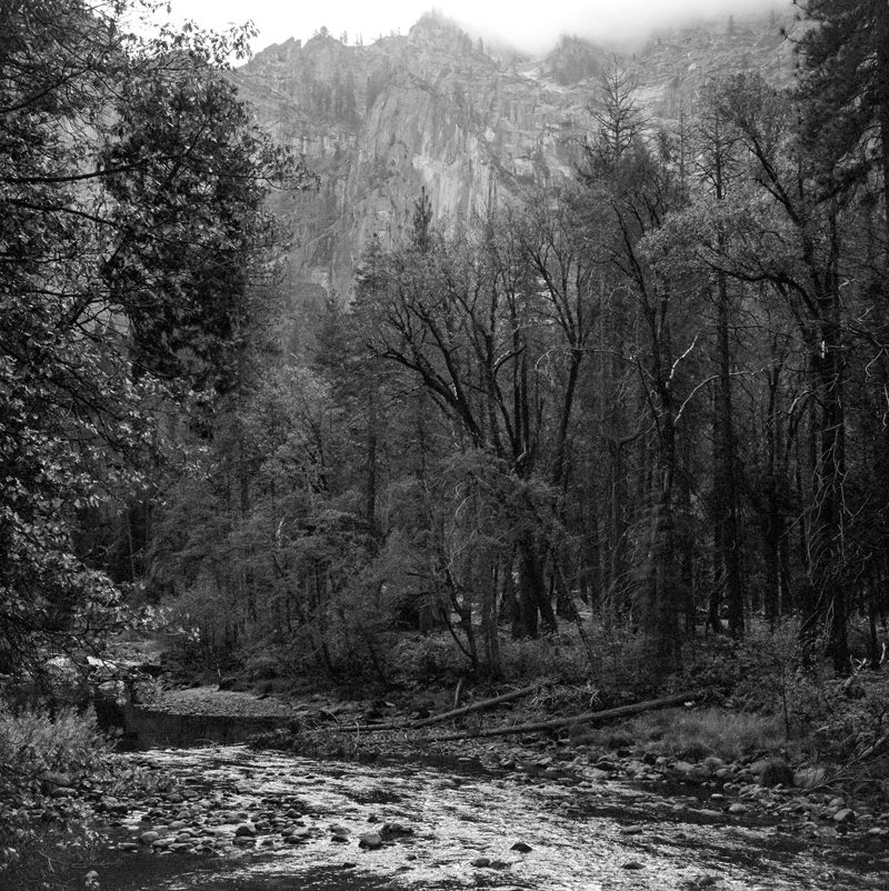 Yosemite national park black and white film photography