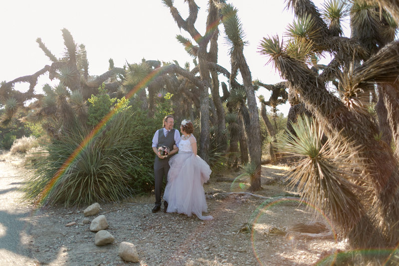 Joshua Tree sunset rainbow flare elopement photos for adventurous couples. California and worldwide destination photographer